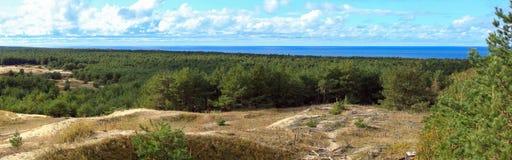 Panorama av Curonian spottar Royaltyfria Bilder