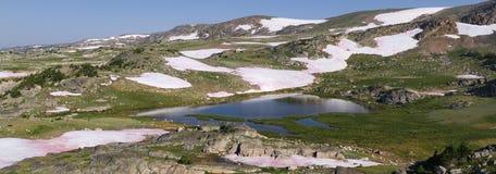 Panorama av de Beartooth bergen royaltyfri fotografi