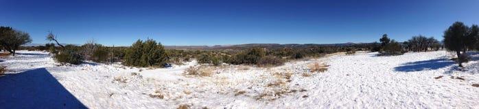 Panorama av den Arizona öknen Arkivfoto