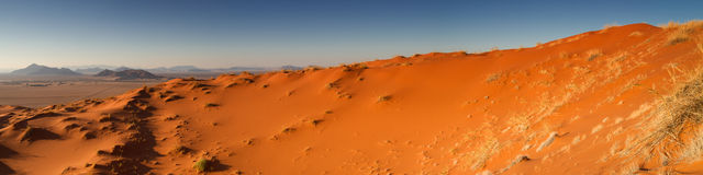 Panorama av den Elim dyn Arkivbild