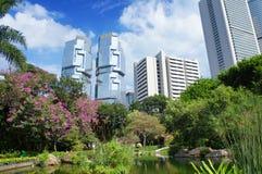 Panorama av den futuristiska staden Hong Kong från Hong Kong Park royaltyfri foto