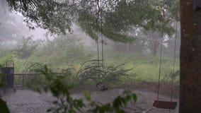 Panorama av den gröna djungeln under tropiskt regn Gröna djungelträd och palmträd, dimma och vändkretsregn T?m gunga arkivfilmer