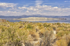 Panorama av den mono sjön, Kalifornien, USA Arkivfoton