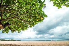 Panorama av den tropiska exotiska stranden med det stora gröna asiatiska trädet Nusa Dua-strand, Bali ö, Indonesien askfat Arkivfoton