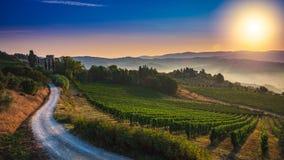 Panorama av den Tuscan vingården som täckas i dimma på gryningen nära Castellina i Chianti, Italien royaltyfria bilder