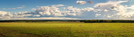 Panorama av det lantliga fältet i sommar med gulingblommor och vägen, Ryssland Arkivbilder
