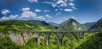 Panorama av Durdevicaen Tara Bridge på Tara River Arkivbilder