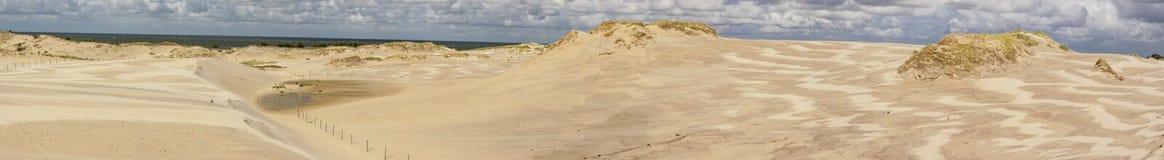 Panorama av dyner - Leba. Royaltyfria Foton