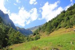 Panorama av en dal i sommar Arkivfoton