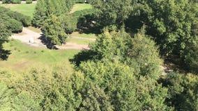 Panorama av en härlig stad parkerar footage Den gröna staden parkerar Den fot- gångbanan med bänkar i rekreationen parkerar arkivfilmer