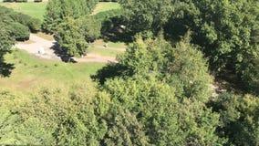Panorama av en härlig stad parkerar footage Den gröna staden parkerar Den fot- gångbanan med bänkar i rekreationen parkerar lager videofilmer