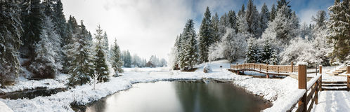 Panorama av en vintermorgon i Carpathiansna Arkivfoto
