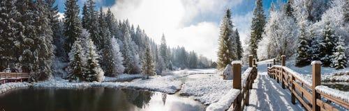 Panorama av en vintermorgon i Carpathiansna Arkivfoton