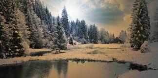 Panorama av en vintermorgon i Carpathiansna Royaltyfri Bild