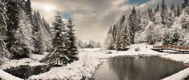 Panorama av en vintermorgon i Carpathiansna Royaltyfri Fotografi