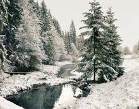 Panorama av en vintermorgon i Carpathiansna Fotografering för Bildbyråer
