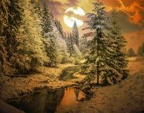Panorama av en vintermorgon i Carpathiansna Royaltyfria Bilder