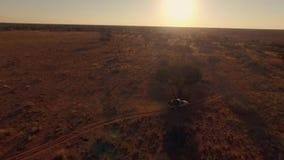 Panorama av enväg bilridning i savannahen av Namibia på solnedgången arkivfilmer