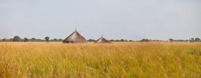 Panorama av grässlätten av södra Sudan Royaltyfri Fotografi