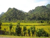 Panorama av grönskande kullar i South East Asia Fotografering för Bildbyråer