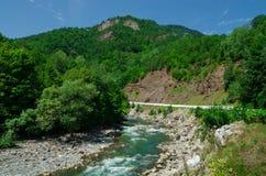 Panorama av härliga White River i caucasian berg i Adygea, Ryssland 23 region Krasnodar Royaltyfri Bild