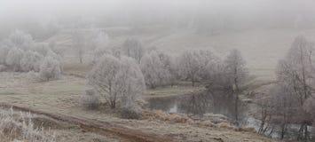 Panorama av höstskogen Fotografering för Bildbyråer