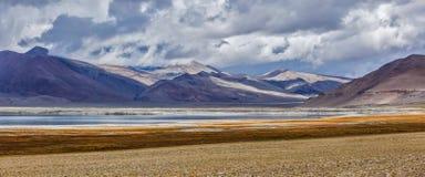 Panorama av Himalayan sjöTso Kar i Himalayas, Ladakh, Indien royaltyfri fotografi