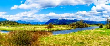 Panorama av honom Alouette flod som ses från fördämningen på Pitt Polder nära lönn Ridge i British Columbia Royaltyfri Fotografi