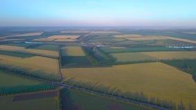 Panorama av jordbruks- fält av Ukraina stock video