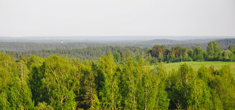 Panorama av kullar som är bevuxna med skogar Ryskt landskap för hög synvinkel Royaltyfri Fotografi
