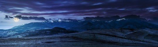 Panorama av lantliga fält i berg på natten Royaltyfri Foto