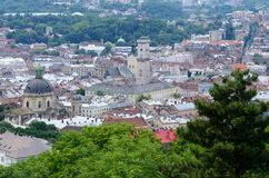 Panorama av Lvov den gamla staden med dominikankyrkan, Ukraina Royaltyfri Bild