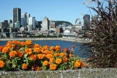 Panorama av Montreal (Kanada) från livsmiljö 67 Royaltyfri Foto