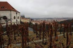 Panorama av Prague Arkivfoto