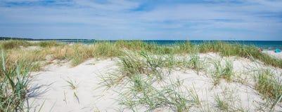 Panorama av sandiga dyn på en strand av Östersjön royaltyfri bild