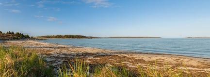 Panorama av Sandy Beach Royaltyfri Fotografi