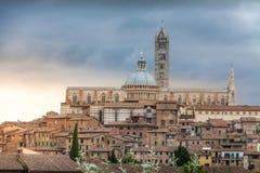 Panorama av Siena, Tuscany, Italien med den härliga kupolen av Siena C Royaltyfri Fotografi