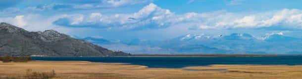 Panorama av Skadar sjön arkivbild