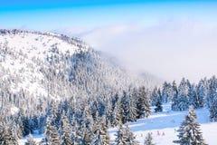Panorama av skidar semesterorten Kopaonik, Serbien, folket som skidar, hus som täckas med snö Arkivfoto