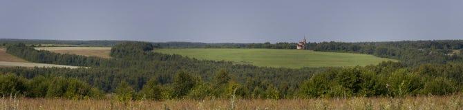 Panorama av skogen Royaltyfria Foton