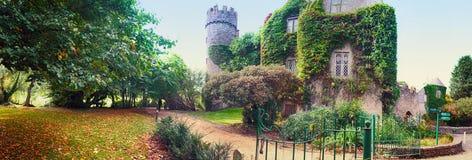 Panorama av slotten nära Dublin Arkivbild