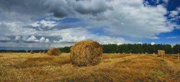 Panorama av sugrörbaler i tomt fält, når att ha skördat tid på en bakgrund av mörka dramatiska moln i mulen himmel arkivbilder