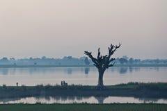 Morgon i Amarapura, Myanmar Arkivbilder