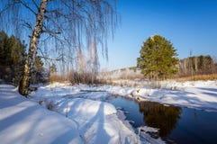 Panorama av vårskogen, Ryssland, Uralsna Arkivbild