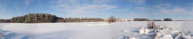 Panorama av vinterfältet Royaltyfria Bilder