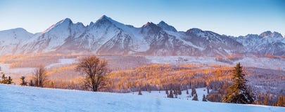 Panorama av vintern Tatras arkivfoto