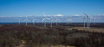Panorama avec la forêt foncée de générateurs de vent au printemps Image libre de droits
