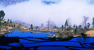Panorama azul dos terraços do arroz do yuanyang   fotos de stock royalty free