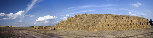 Panorama of bales of straw on a wheaten field. And beautiful sky Stock Images