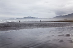 Panorama of a beach at Chiloe national park. Royalty Free Stock Photo
